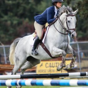 Bayley Russel and Parker OTTB